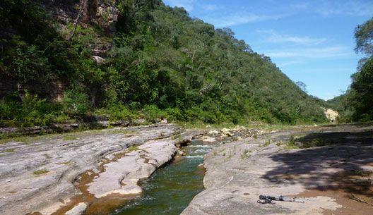 Reserva Nacional General Pizarro