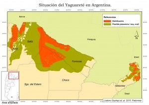Situación actual del Yaguareté en la Argentina.
