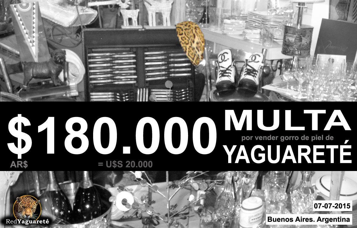 $180.000 pesos de multa por vender un gorro hecho con piel de Yaguareté